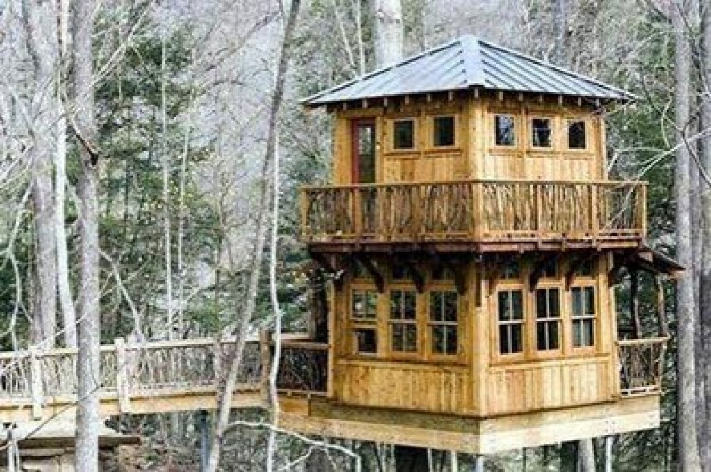World's most incredible tree houses_Part2
