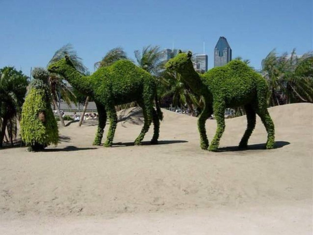 Amazing Garden Figures and Designs