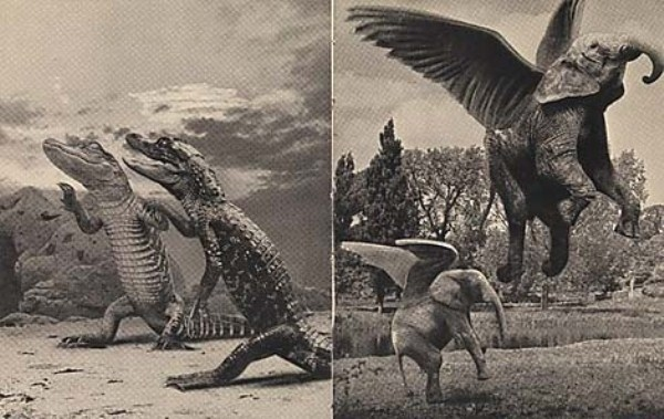 Incredible photographic tricks before Photoshop