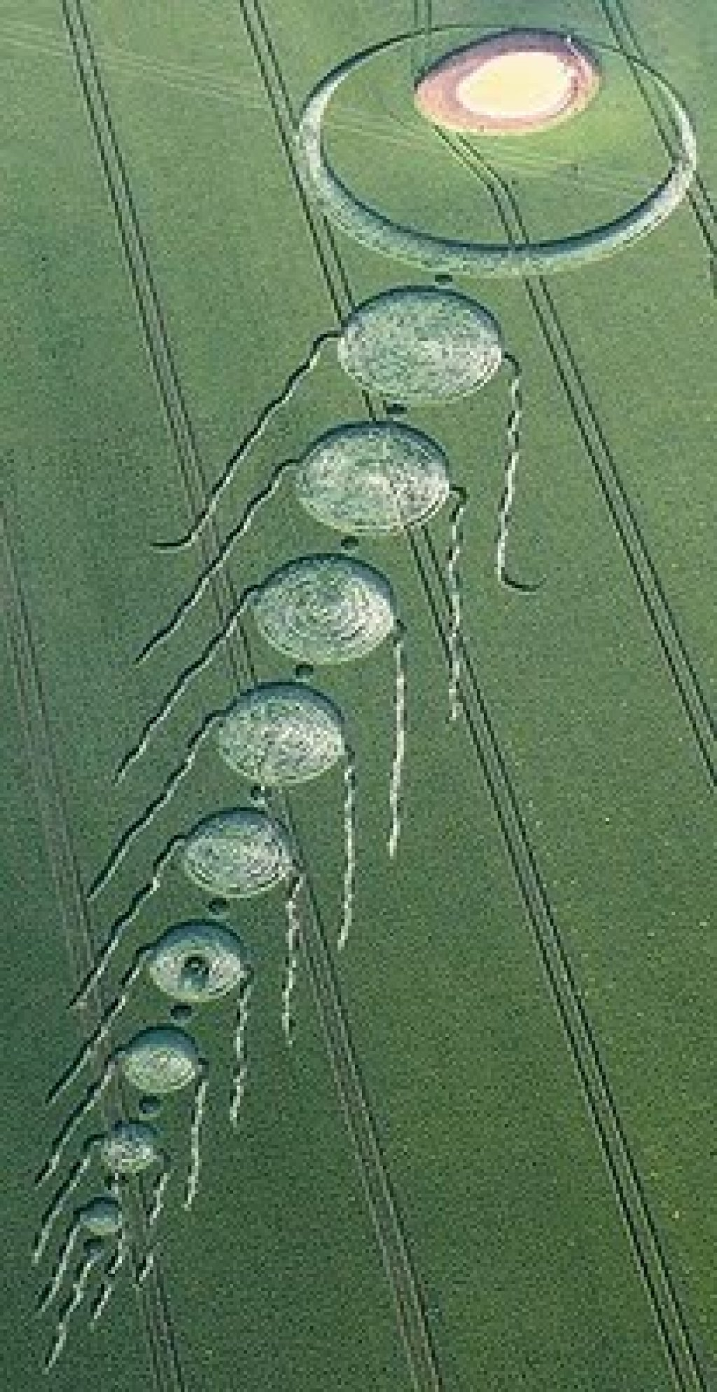 Amazing inexplicable crop circles