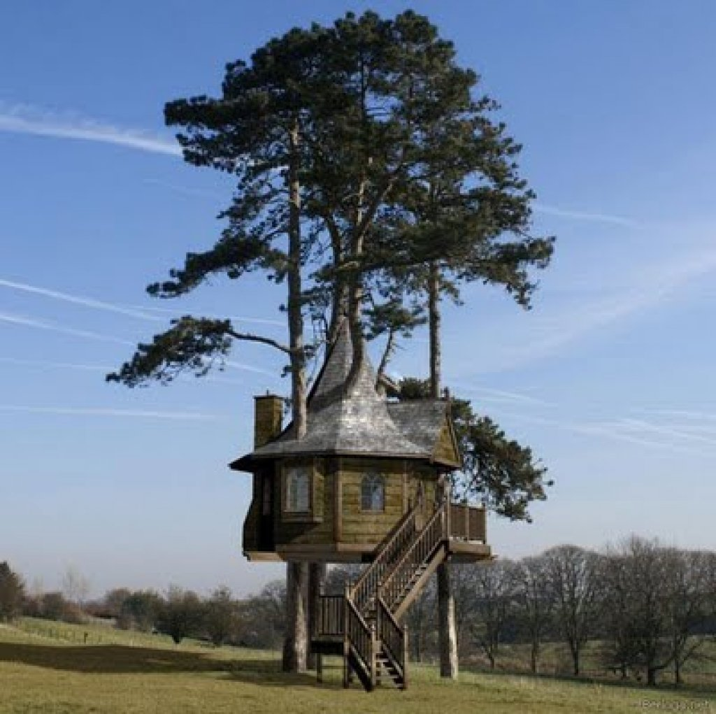 World's most incredible tree housesPart 1